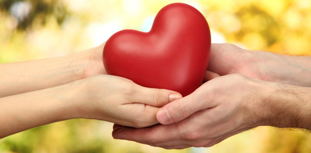 cuorehumanity2